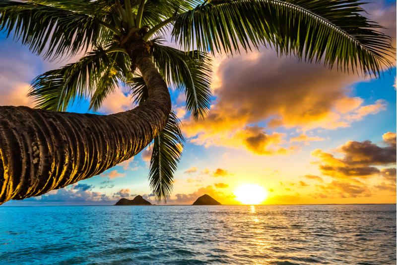 2021年第19届夏威夷国际教育年会(HICE)