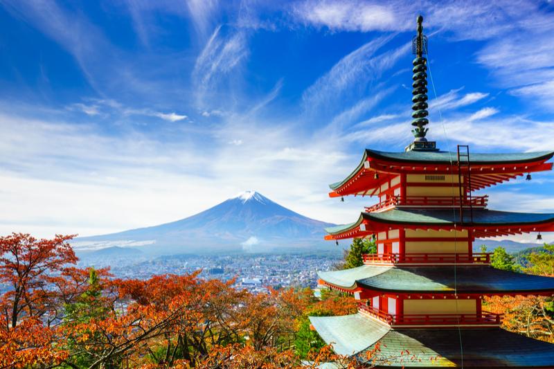 2021年第93届日本胃癌协会年会(JGCA)